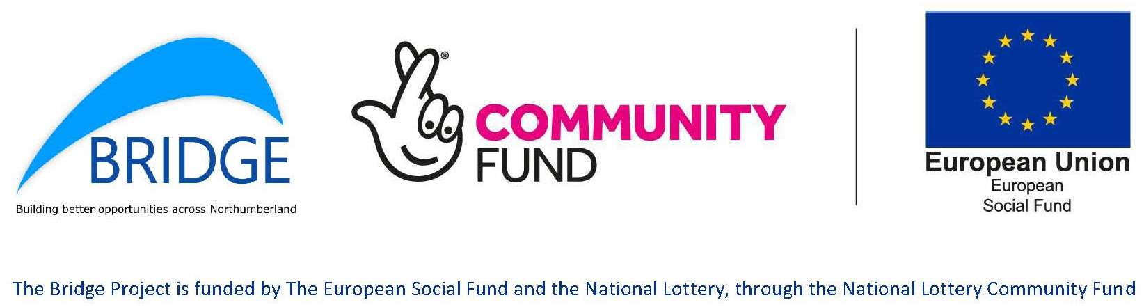 Bridge Community Fund ESF logo May 19